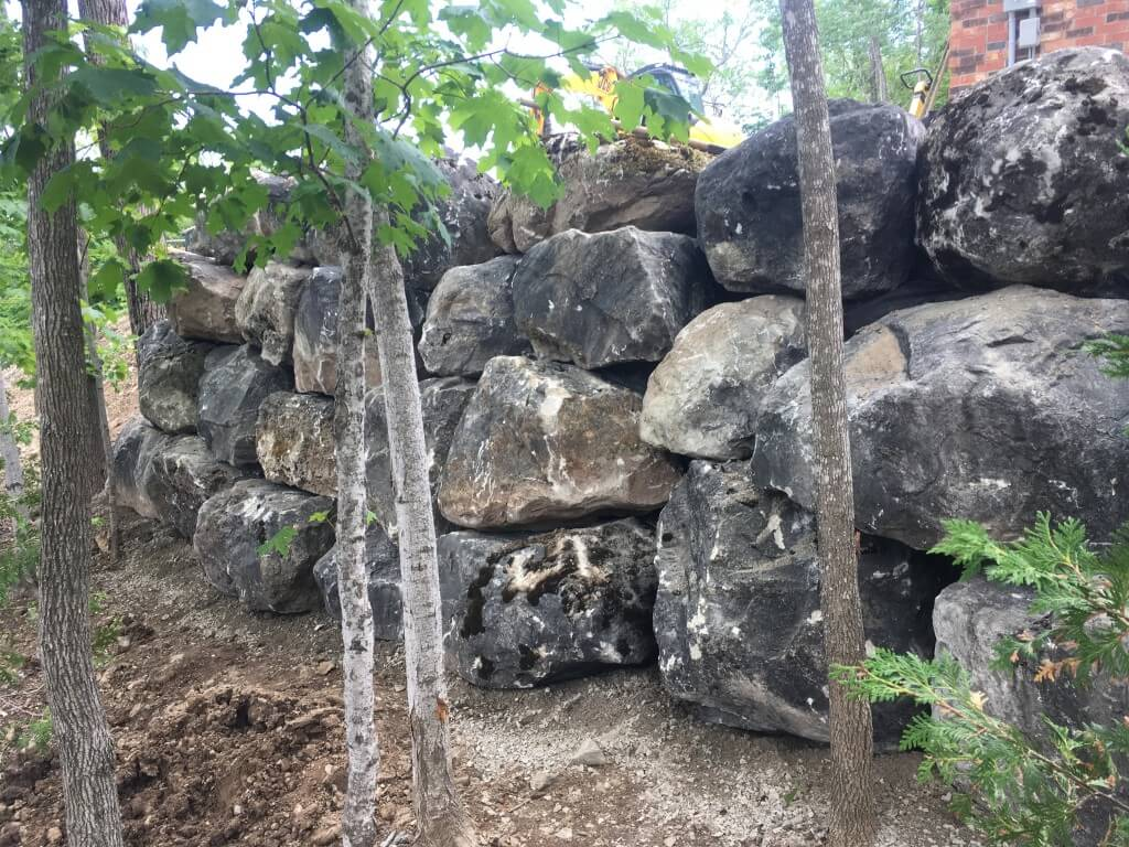 Natural retaining wall